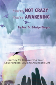 You're Not Crazy, You're Awakening : Journey To Discovering Your Soul Purpose, Joy And Abundant Life
